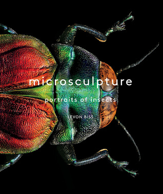 Book Cover of Microsculpture by Levon Bliss