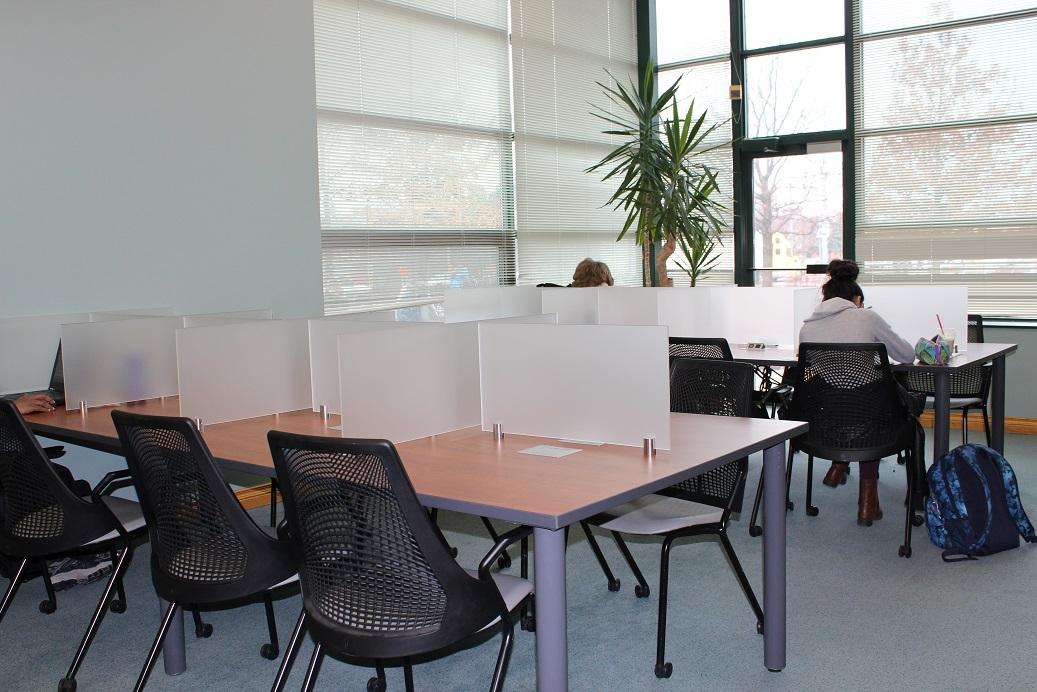New study area.